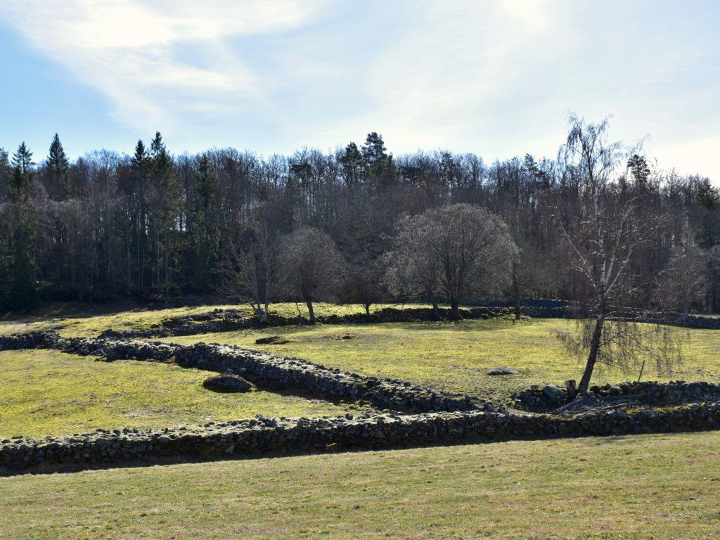 Vackra stengärdsgårdar vittnar om svunna tiders jordbruk.